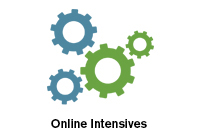 online intensives
