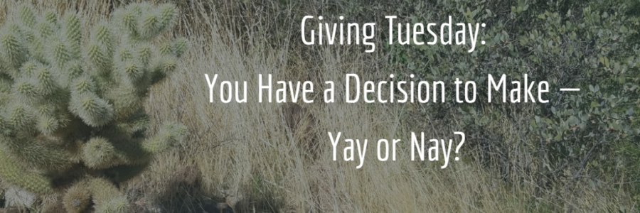 Giving Tuesday: You Have a Decision to Make — Yay or Nay? (NonprofitPRO)